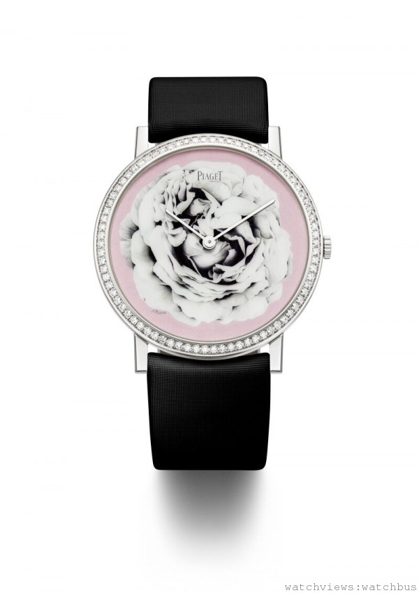 PIAGET ALTIPLANO MINIATURE ENAMEL DIAL,18K白金錶殼,直徑 38 毫米,鑲嵌78顆圓形美鑽(約重0.7克拉),錶盤飾以大明火(Grand feu)燒製及微縮琺瑯彩繪(miniature)而成的Yves Piaget玫瑰圖紋,伯爵自製430P超薄手動上鍊機芯,絹質錶帶,搭配18K白金針釦式錶釦,獨一無二款式,全球限量一只。