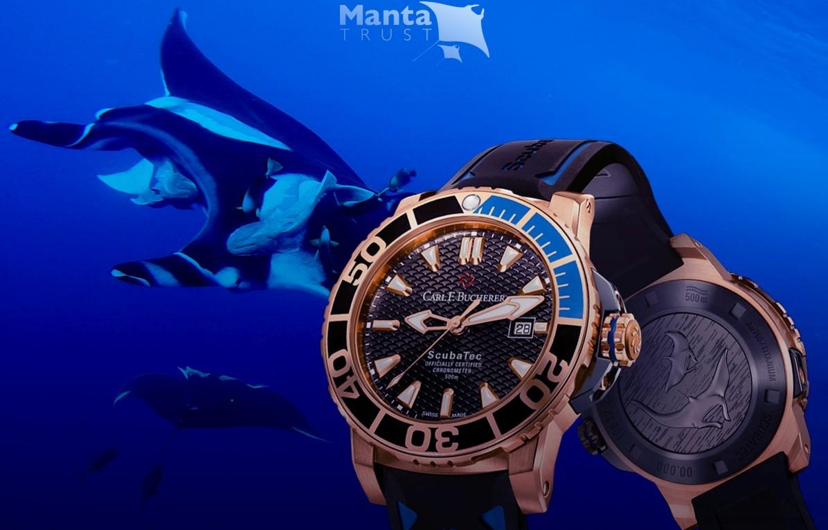 攜手推動保護魟魚研究工作:寶齊萊推出玫瑰金版柏拉維ScubaTec潛水腕錶,全力支持魟魚基金會