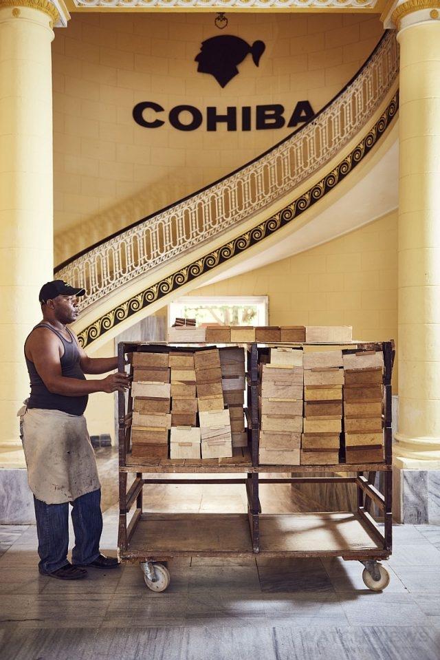 完全以手工製成的Cohiba不單是最上等的產品,也受到愛好者的熱烈追捧。在1966年至1982年之間,品牌曾是古巴政府專門贈與外國達官顯貴及外交官的禮物。