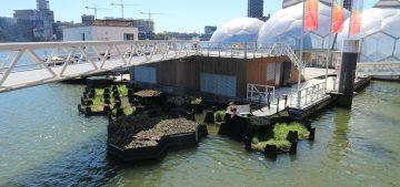 Audi綠手指 水上塑膠垃圾變公園