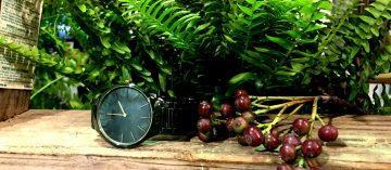取材於自然的創意:Rado有機時間展