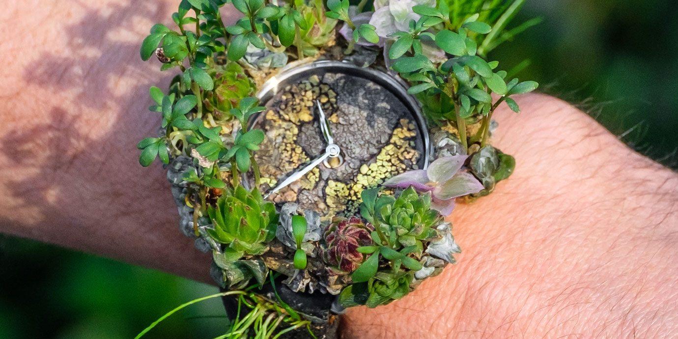 【Pre-SIHH 2019】另類100%瑞士製造:亨利慕時Moser Nature Watch